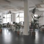 Sydney's Top 5 Commercial Interior Design and Décor Trends